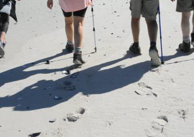 Leaving footprints.
