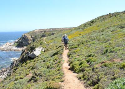 Single Track looking towards cliffs.