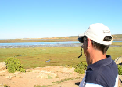 Birding at the Olifants River mouth.