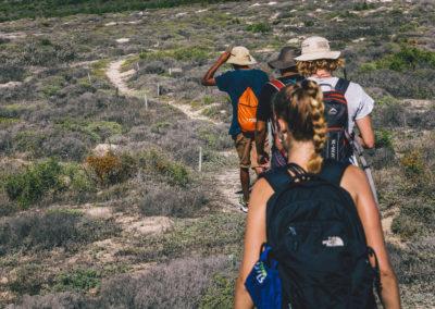 CRAYFISH trail-6